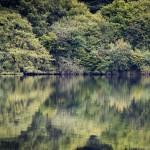 Wales 2013 - Tallybont Reservoir